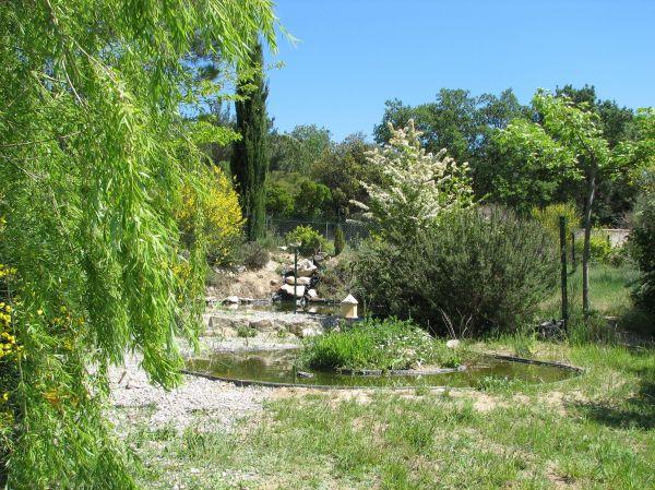 Jardin cologique et bassin aquatique for Bassin aquatique jardin